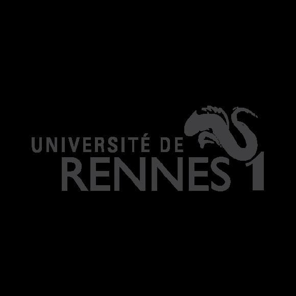 უნივერსიტეტი რენ 1